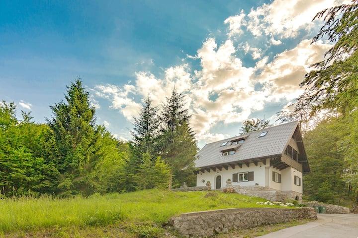 Lake Bohinj - Luxury Hunting Lodge, 5 bedrooms