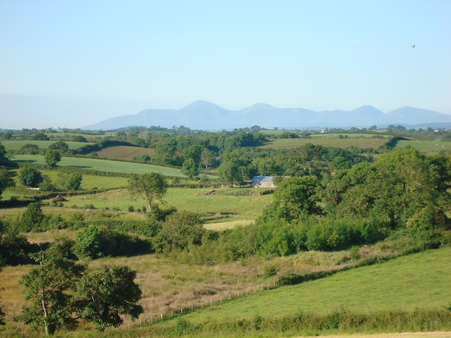 One of the views of the Mourne Mountains from our premises