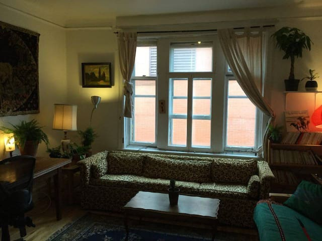 Cosy and sunny flat - Heart of MILE END - Montreal - Byt