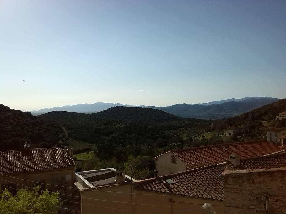 Les Albères (vue de la terrasse)