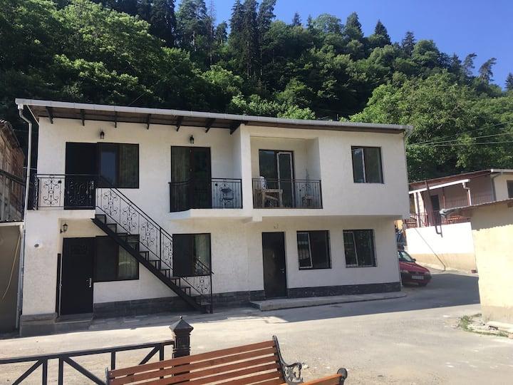 My flat in Borjomi