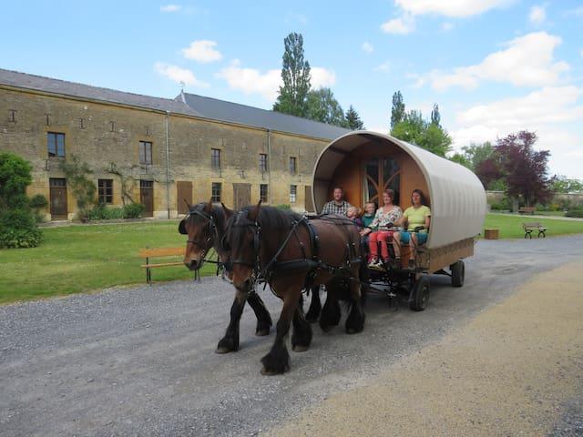 Roulotte itinérante en Ardennes