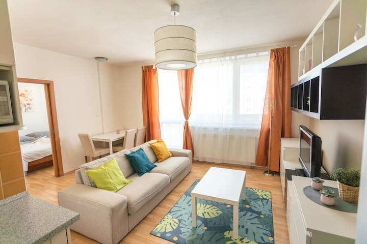 Cosy flat in wide center with good accessibility