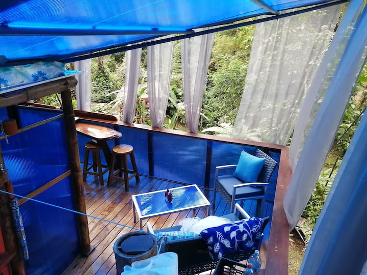 Treehouse the Blue Morpho floating w/360* view!