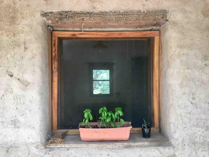 Habitación  de súperadobe en Yacumama eco-lab