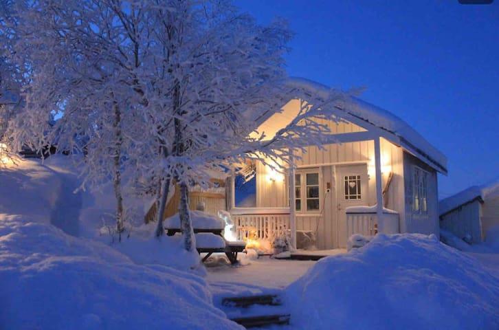 Trivelig hytte midt i Sápmi.