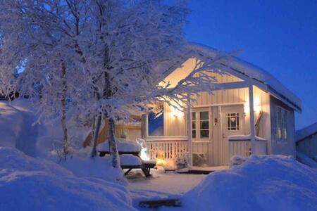 Trivelig hytte midt i Sápmi/ Olebu