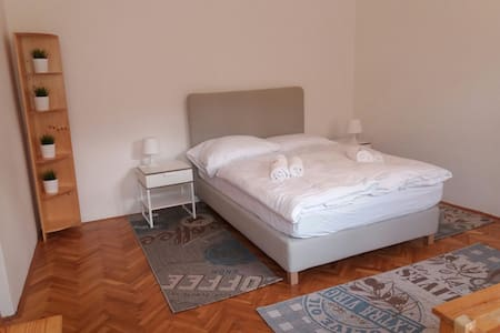 61 m² flat in the very centre of the Prague - Prag - Wohnung