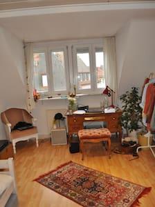 cute flat near the city center - Würzburg