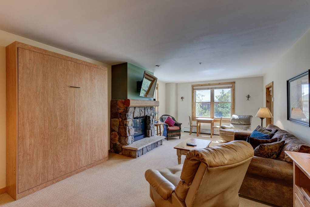 The living area offers additional sleeping arrangements with a queen-sized sleeper sofa and a Murphy bed.