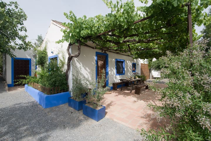 Nice cottage with pool near Granada - Alhendín - Haus