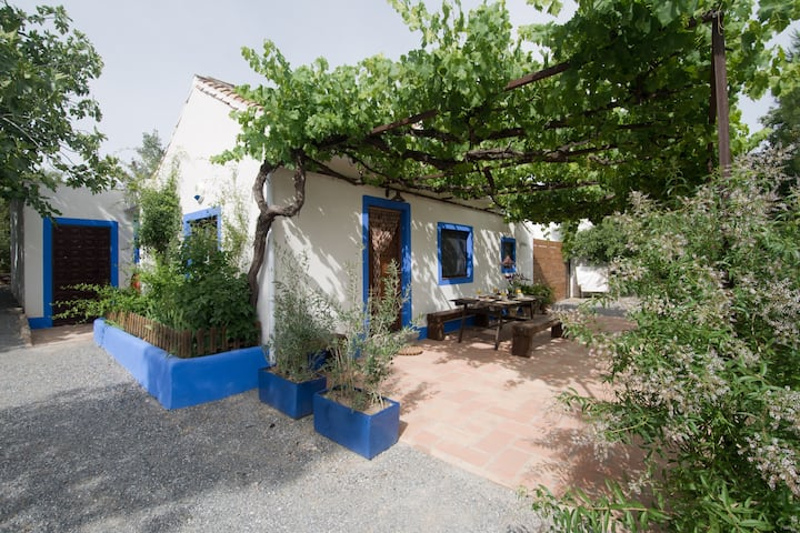 Nice cottage with pool near Granada