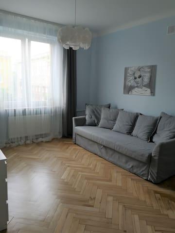 Comfy apartment on Brechta street