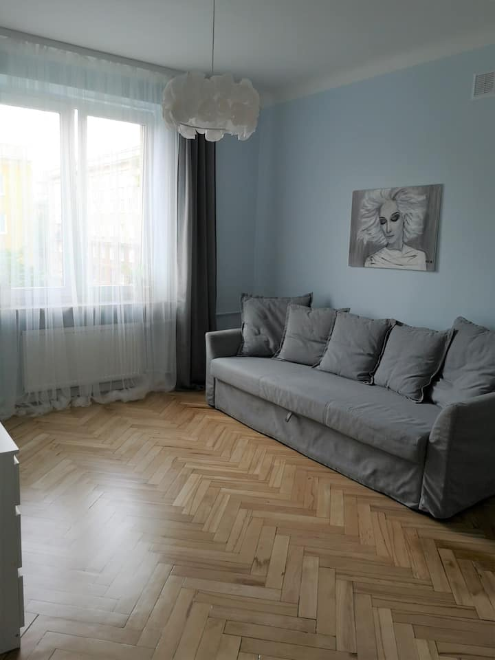 Comfy apartment on Brechta street