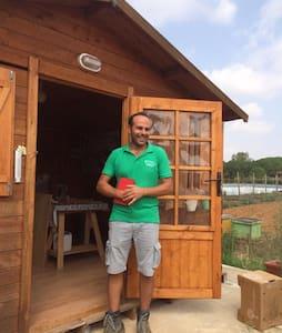 La casa nelle api Bio Gold Farm