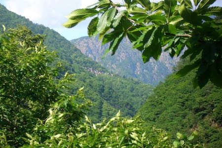 B & B CA' DEL PITUR di Cicogna, VAL GRANDE - Cossogno