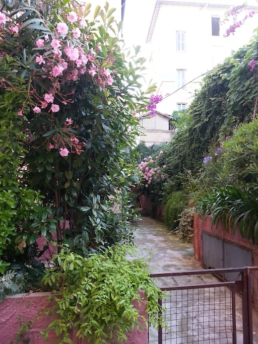Entrée fleurie / The entrance