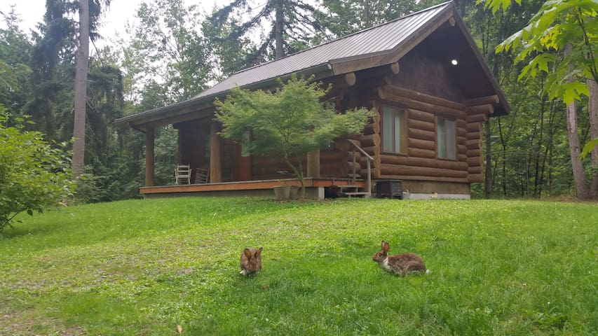 "The Cottontail Haven Lodge- your ""get-away"" place - Lake Tapps - Stuga"