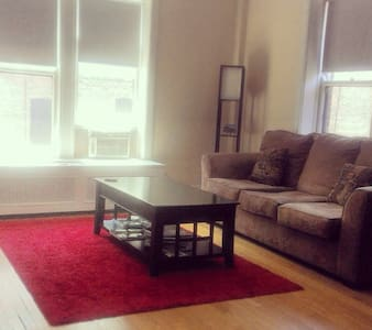 1BR next to Lincoln Park Zoo Chi  - Chicago - Apartment