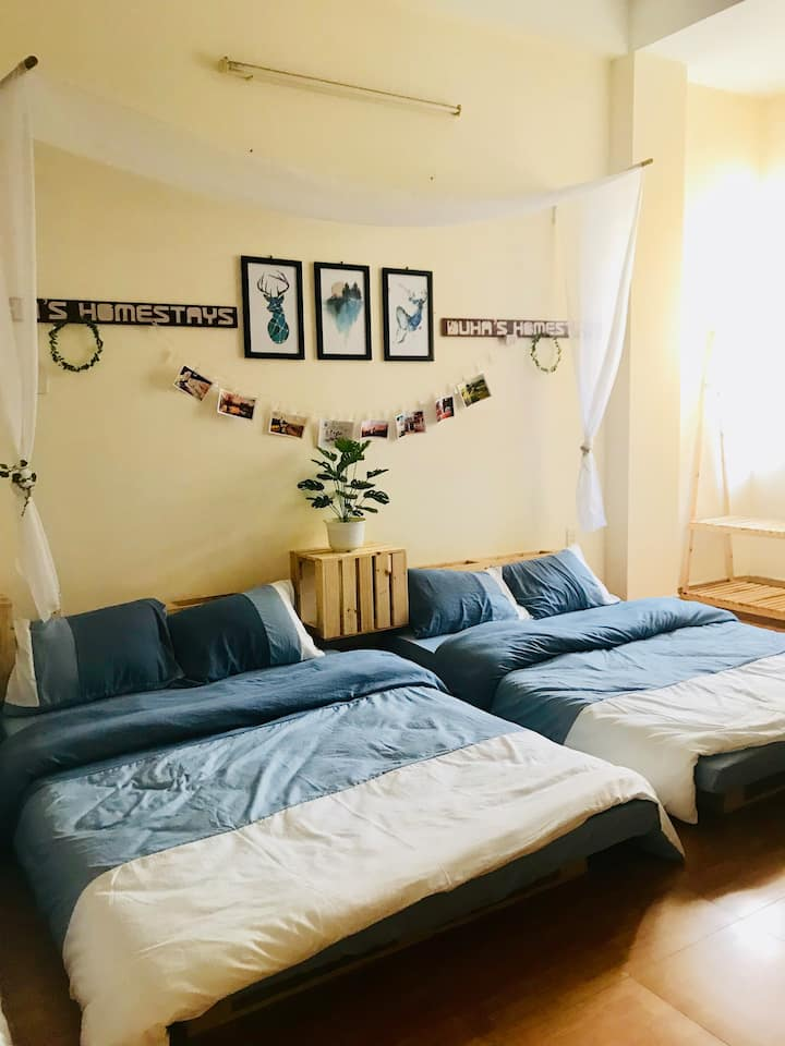 Cozy house in centre for group (6-8pax)