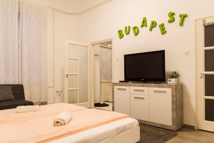 NEW!!!Wonderful Apartment in Bdpst Metro 1min