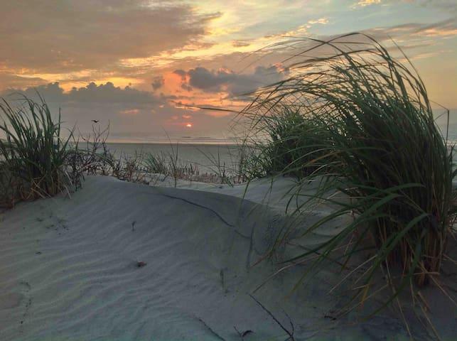 OCEANVIEW BEACH Cottage Steps to Beach &Promenade