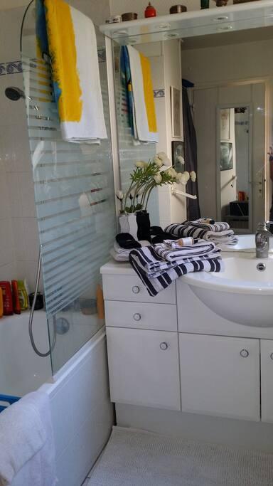Grande salle bain : douche + baignoire