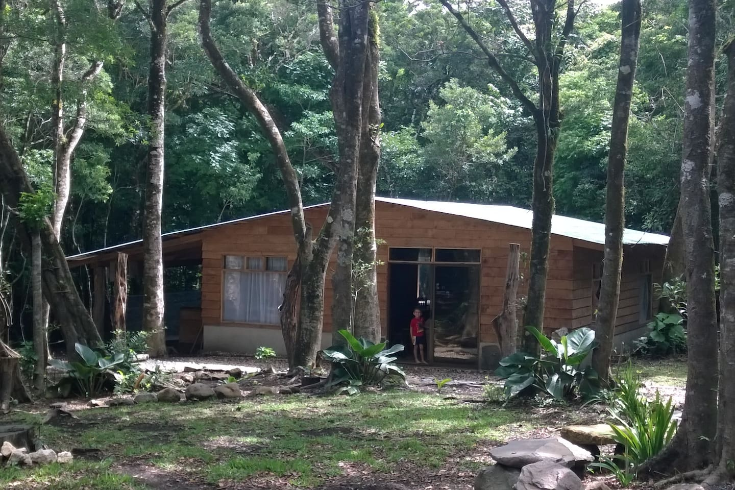 Our little forest house is filled with love, laughter, and hospitality.