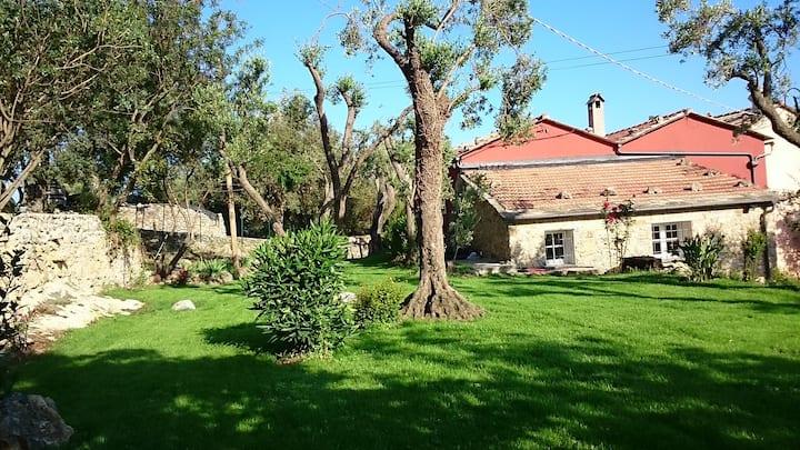 Villa intera Case di Campo   7km dal mare.