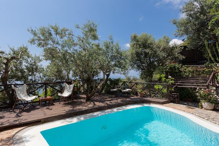 Spectacular villa near Positano