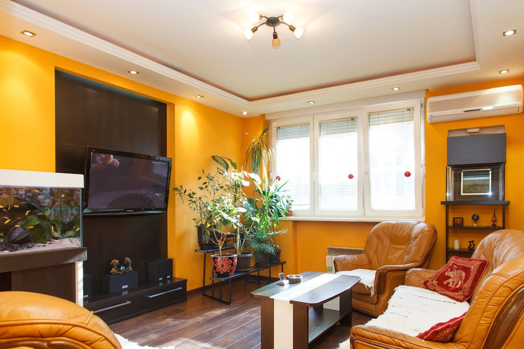 Living room with aquarium and FREE WI FI in all apartment