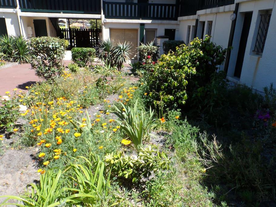 jardin intérieur, avec cagibi pour vélos,planches de surf