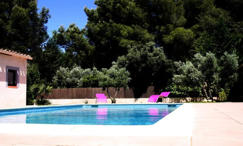 Lovely T3 among olive trees - Velaux - Appartement