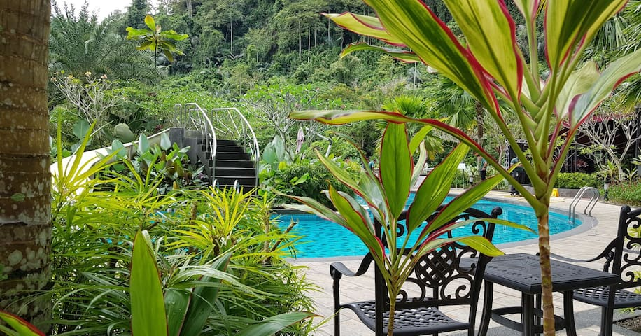 The Haven Resort Tambun Ipoh (Newly Renovated)