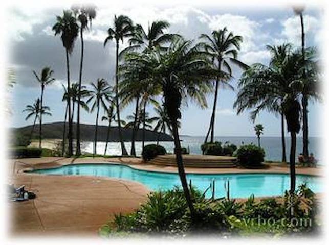 Lovely Ocean and Beach views Studio - Maunaloa