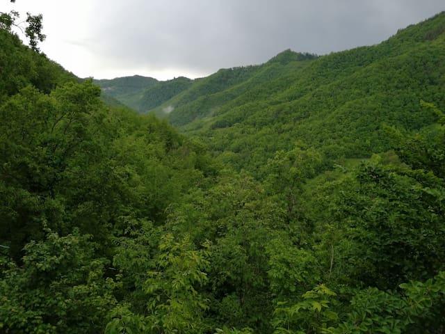 Il bellissimo panorama