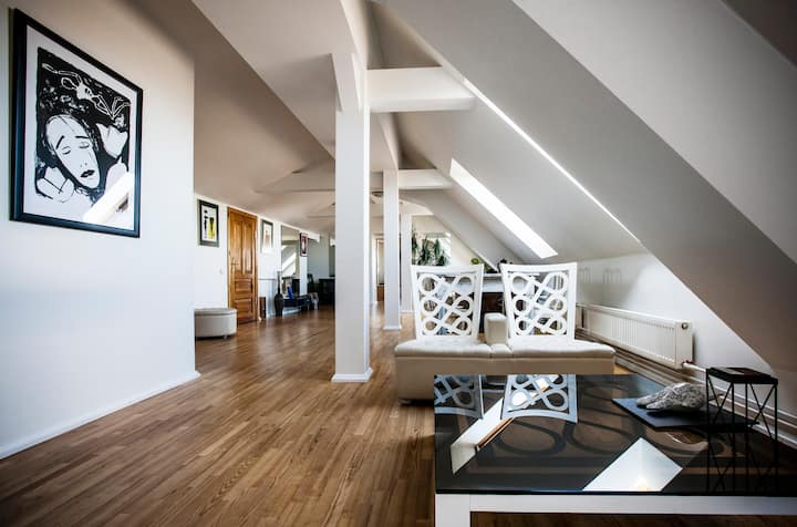 Penthouse apartment with tower and terrace. Center