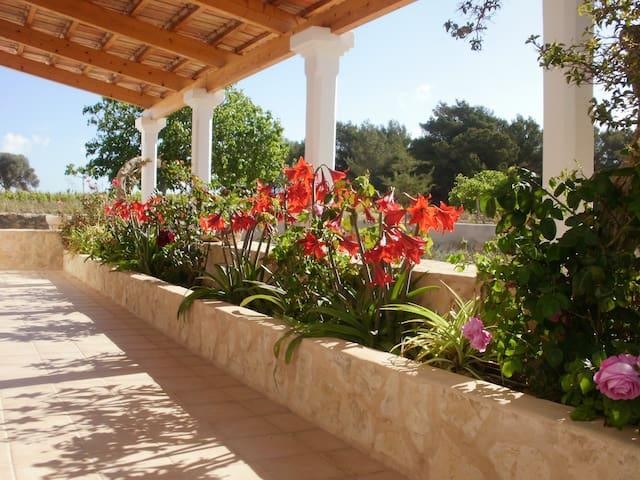 Casa de campo tradicional - Formentera - Hus