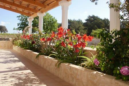 Casa de campo tradicional - Formentera