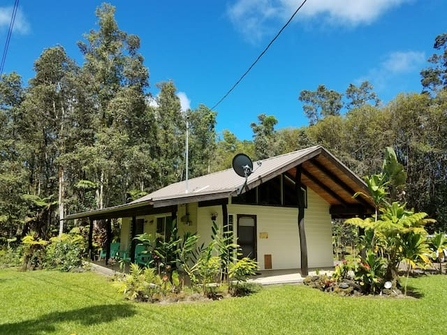 Anthurium Forest Cottage