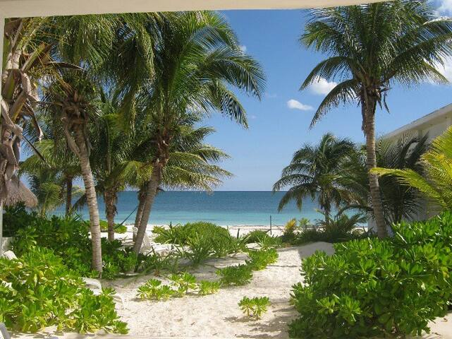 Garden Suite on the Beach, Ground Level - Puerto Morelos - Apartment