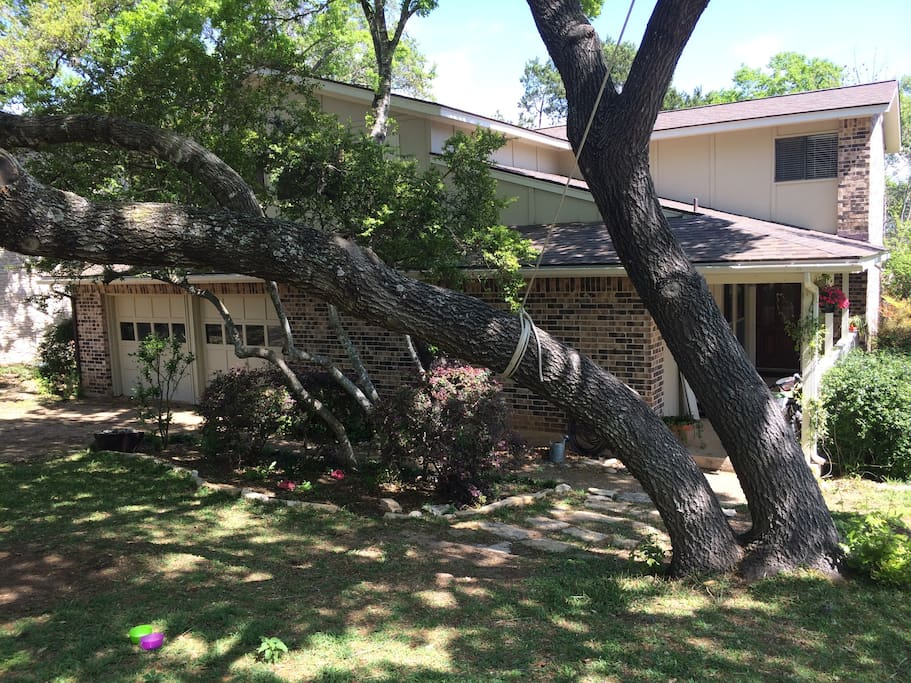 Beautiful, tree covered yard welcomes you to your Austin home!