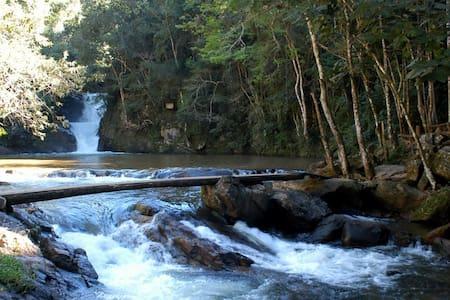 Bosque das Águas III