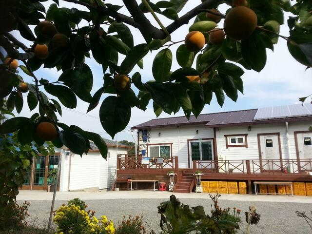 단감방 - 배우고 맛보고 힐링하는 즐거움이 있는 곳 - Yueo-myeon, Changyeong - Casa