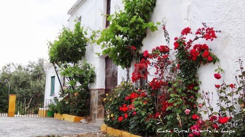 Casa Rural Huerta la Lapa - Cañete la Real - Dům