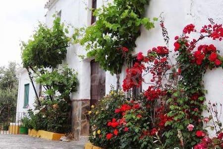Casa Rural Huerta la Lapa - Cañete la Real - House