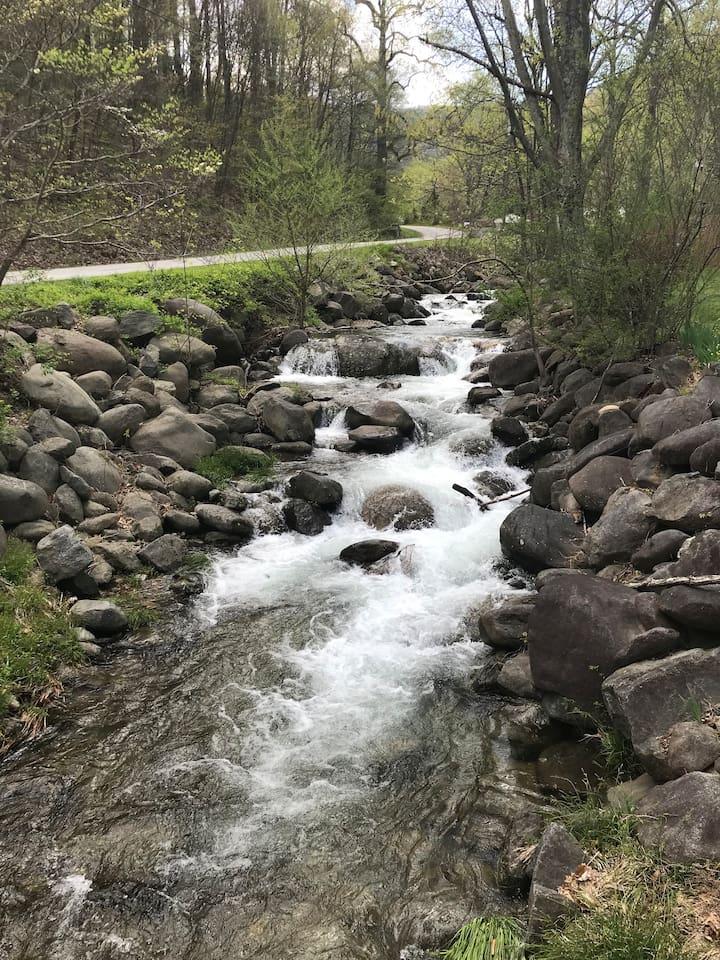 Coxs Creek