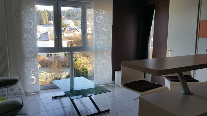 studio calme et lumineux & parking  Oyonnax centre
