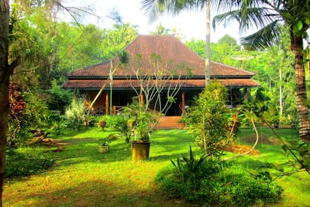 'House of the Swaying Palms' - Watulimo