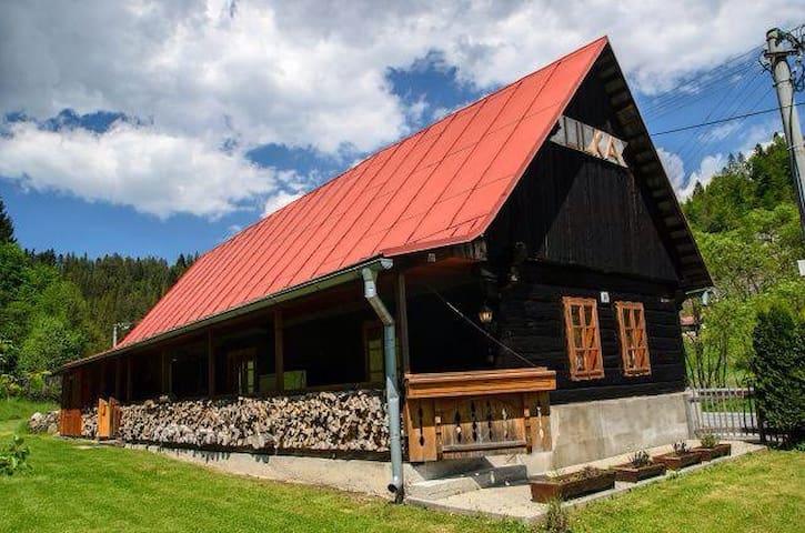 Cottage LILKA - Hnilčík - Dağ Evi